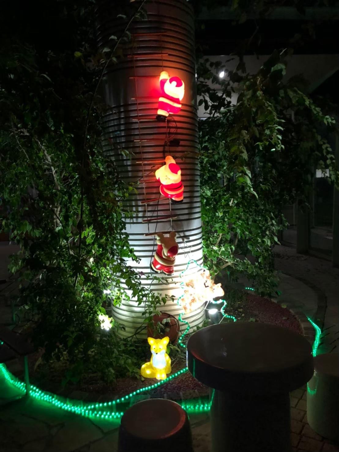 ← 昨年もあった、煙突を梯子で登っているサンタさんです!(このイルミネーション縦に長いので設置するのに一苦労しています…笑)  サンタさんの下にはこれまた去年もいたキツネとイルミネーションのミニ・クリスマスツリーも飾ってあります!